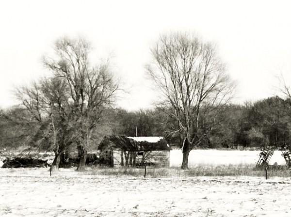House on field16.jpg PS