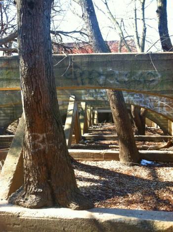 Abandoned Mill97.jpg PS