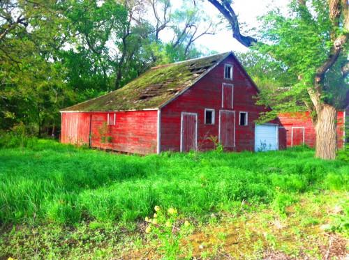 Abandoned Farmhouse -5-15 45.jpg PS