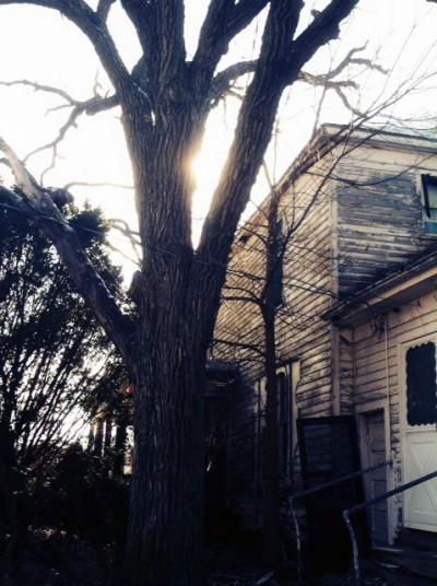 NE City House6.jpg PS
