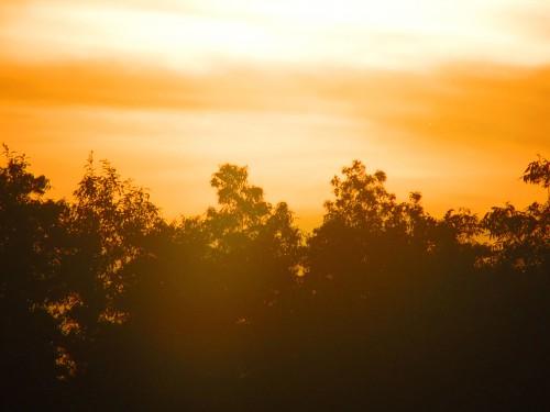 Sunset Trish Eklund2 PS