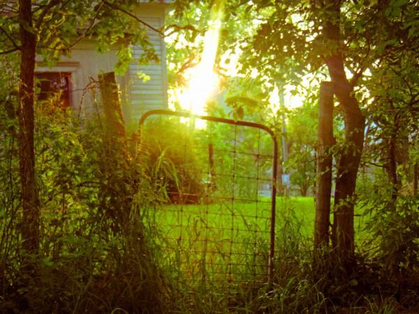 Creepy House Gate2 PS