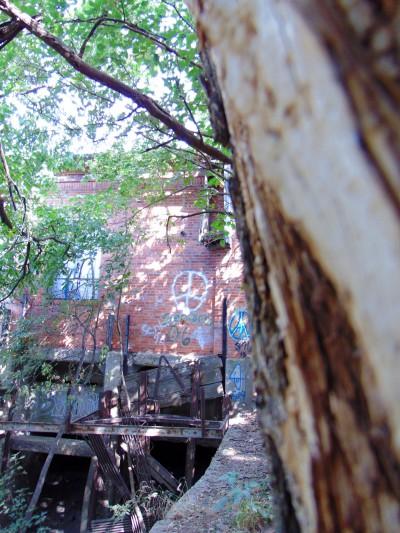 Mill 11 Eklund