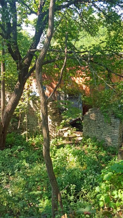 Mill 41 Eklund